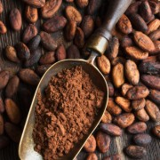 Cacao & Carob Products